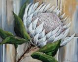 Tranquil Protea - SOLD