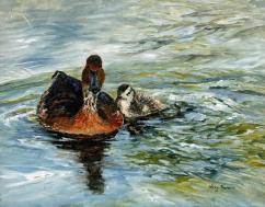 Ducks on Pond 2 - AVAILABLE
