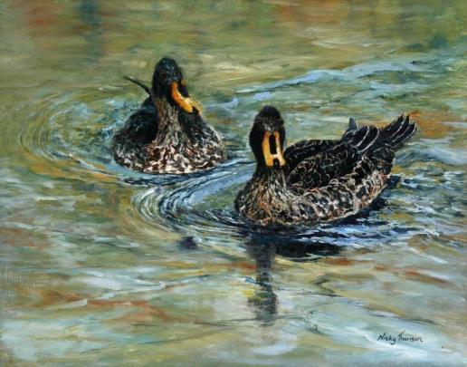Ducks on Pond 5 - AVAILABLE